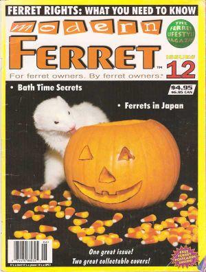 Modern Ferret 1996web
