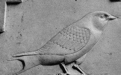 300sbc Limestone swallow