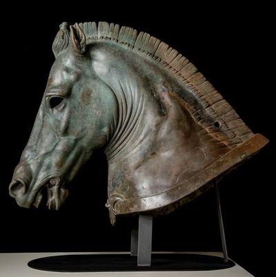 Medici Riccardi Horse Head