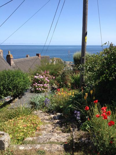 Cadgwith 14