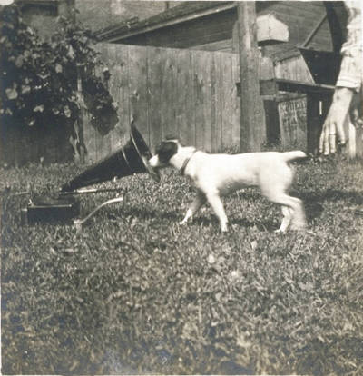 Unidentified_ca_1920_dog